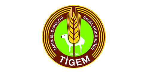 tigem polatli logo
